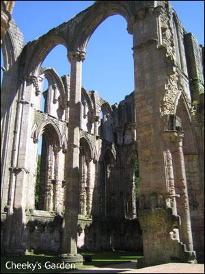 ファウンテンズ修道院の画像 p1_26